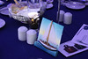 "The Parkwood Foundation ""Come Sail Away"" 2012 Benefit Gala : Please email:   Denise@LifeartDesigns.ca  or call  905-550-9309 to order your digital photographs, thank you."